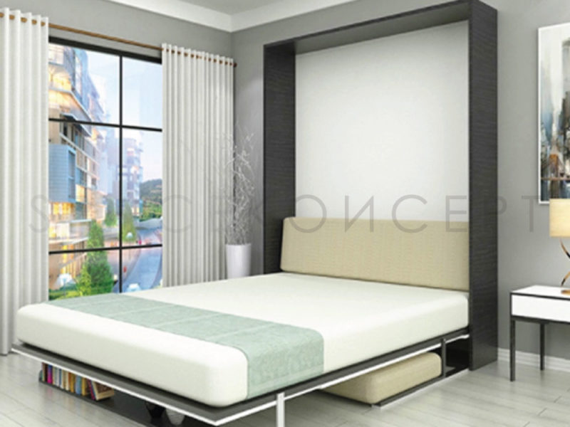 Eline High Quality E Saving Vertical Murphy Wall Bed With Sofa